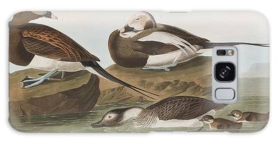 Long-tailed Duck Galaxy Cases