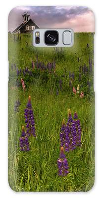 Galaxy Case featuring the photograph Maine Lupines And Home After Rain And Storm by Ranjay Mitra