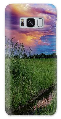 Meadow Lark Galaxy Case