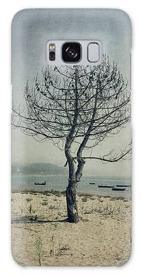Designs Similar to Naked Tree by Marco Oliveira