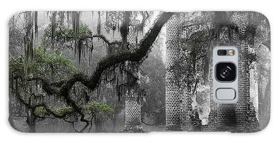 Lowcountry Galaxy Cases