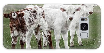 Galaxy Case featuring the photograph Oreo And The Twins by Brad Allen Fine Art