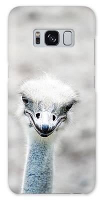 Ostrich Galaxy Cases