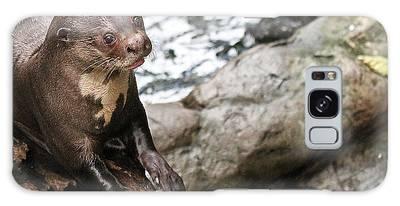 Otter Surprise Galaxy Case