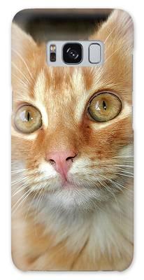 Portrait Of A Cat Galaxy Case