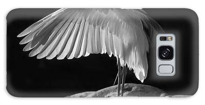 Preening Great Egret By H H Photography Of Florida Galaxy Case