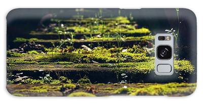 Reclaimed By Nature Galaxy Case