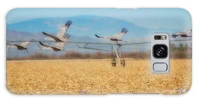 Sandhill Cranes In Flight Galaxy Case
