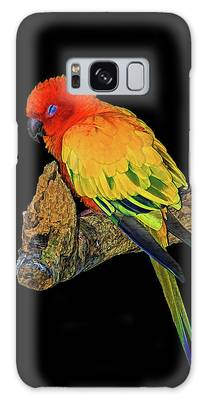 Sleepy Sun Conure Galaxy Case