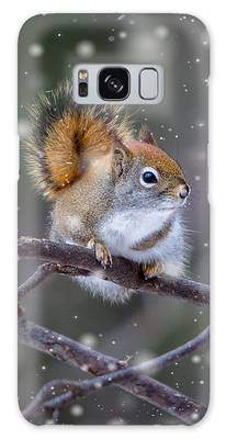 Galaxy Case featuring the photograph Squirrel Balancing Act by Patti Deters