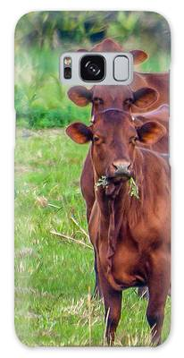 Galaxy Case featuring the photograph Stacked Up Cows          by Tom Claud