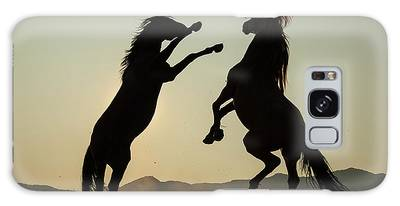 Stallion's Dance Galaxy Case