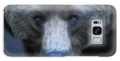 Grizzly Bears Photographs Galaxy Cases