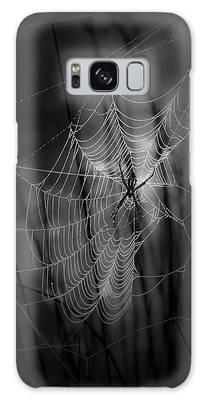 Spider Galaxy Cases