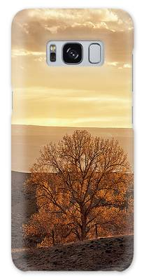 Tree In Desert At Sunset Galaxy Case