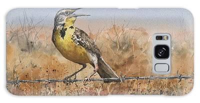Meadowlark Paintings Galaxy Cases