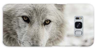 Galaxy Case featuring the photograph White Wolf II by Brad Allen Fine Art