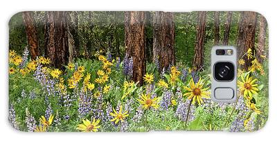 Balsamroot And Lupine In A Ponderosa Pine Forest Galaxy Case