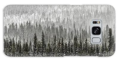 Galaxy Case featuring the photograph Winter Forest by Brad Allen Fine Art