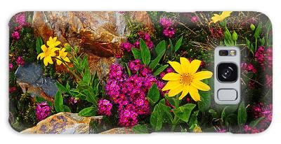 Yosemite Wildflowers Galaxy Case