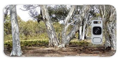 Australian Bush Scene Galaxy Case