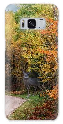 Autumn Buck  Galaxy Case by Patti Deters