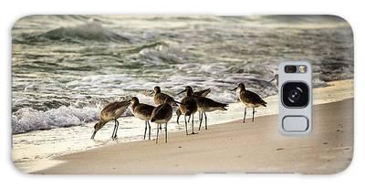 Birds On The Beach Galaxy Case