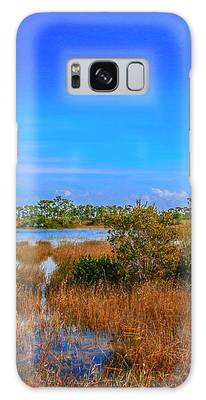 Blue Sky And Marsh Galaxy Case by Tom Claud