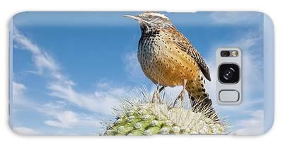 Cactus Wren On A Saguaro Cactus Galaxy Case