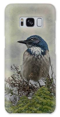 Galaxy Case featuring the photograph California Scrub Jay - Vertical by Patti Deters