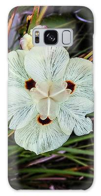 Caribbean Wildflower Galaxy Case