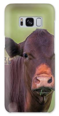 Curious Cow #636 Galaxy Case by Tom Claud