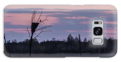 Eagle Sunset Galaxy Case