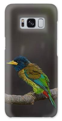 Feather Galaxy Cases