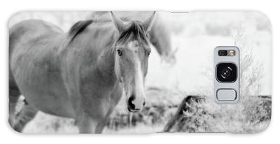Horse In Infrared Galaxy Case