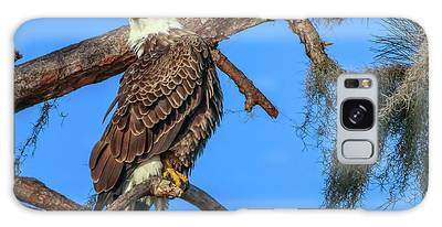 Galaxy Case featuring the photograph Lookout Eagle by Tom Claud