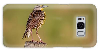 Galaxy Case featuring the photograph Meadowlark On Post by Tom Claud