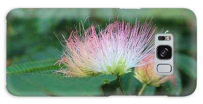 Mimosa Tree In Bloom Galaxy Case