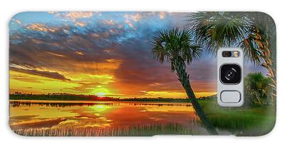 Galaxy Case featuring the photograph Palm Tree Sunset by Tom Claud