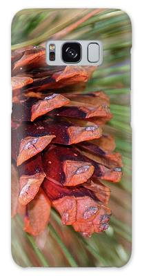 Pine Cone Galaxy Case by Patti Deters