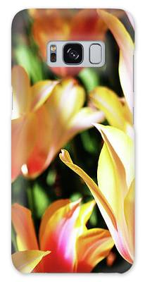 Pink And Yellow Tulips Galaxy Case by Cynthia Guinn