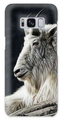 Galaxy Case featuring the photograph Wisdom From Up High by Brad Allen Fine Art