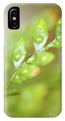 IPhone Case featuring the photograph  Fern Fronds by Richard J Thompson