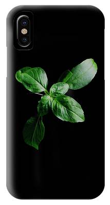 A Sprig Of Basil IPhone Case