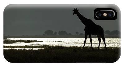 Chobe National Park Phone Cases