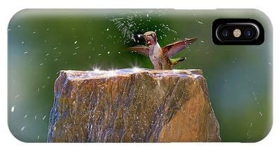 Annas Hummingbird Phone Cases