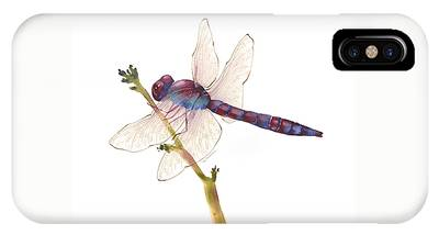 Burgundy Dragonfly  IPhone Case
