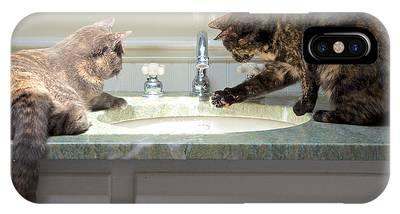 Cat Curiosity IPhone Case