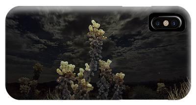 Cylindropuntia Bigelovii Photographs iPhone Cases