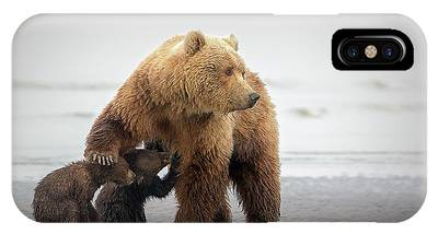 Alaska Phone Cases